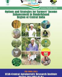 Options and strategies for Farmer's Income Enhancement in Bundelkhand Region of Central India